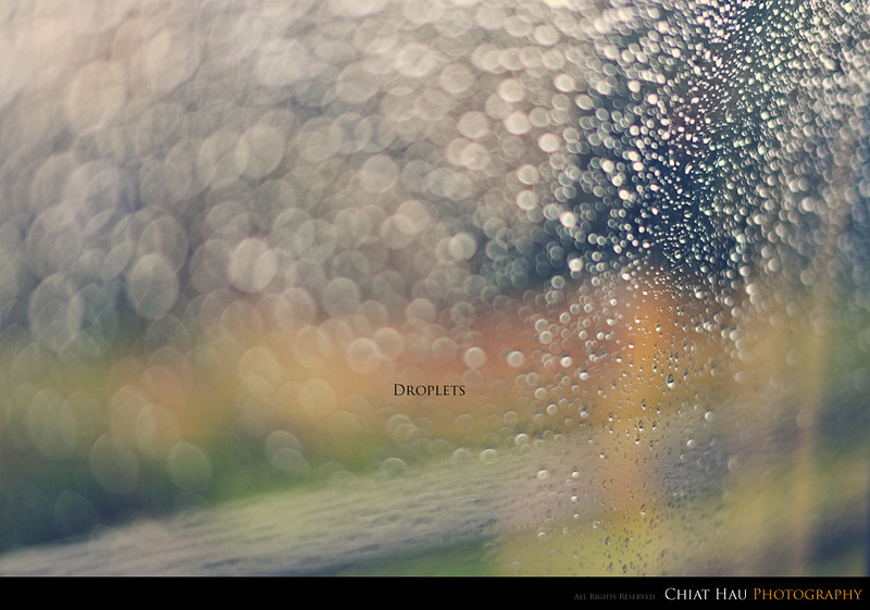 Travel Photography by Chiat Hau Photography (Cameron Highland  - Droplets Bokeh)