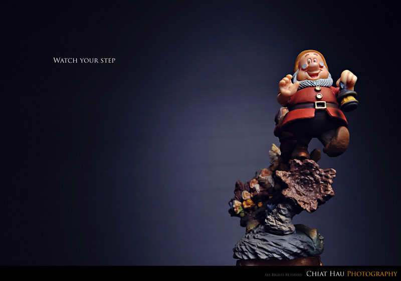 Toys Photography by Chiat Hau Photography (7 Dwafts)