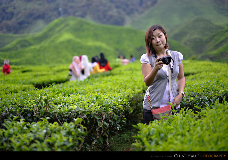 Portrait Photography by Chiat Hau Photography (Cameron Highland)