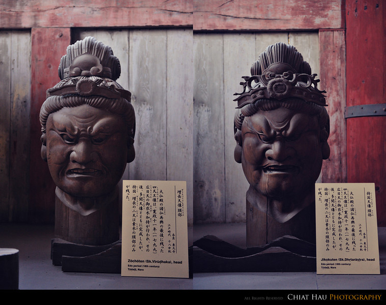 Travel Photography by Chiat Hau Photography (Japan Trip)
