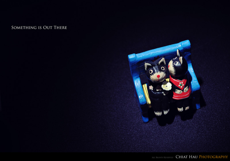 Toy Photography by Chiat Hau Photography (Bali Display)