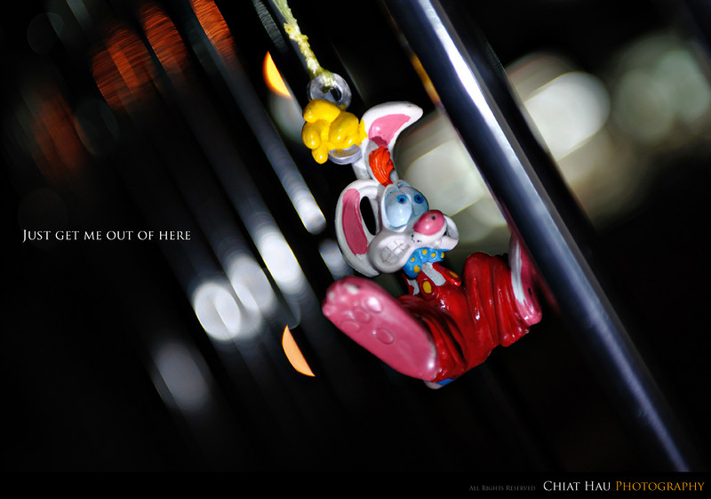 Toys Photography by Chiat Hau Photography (Roger Rabbit)
