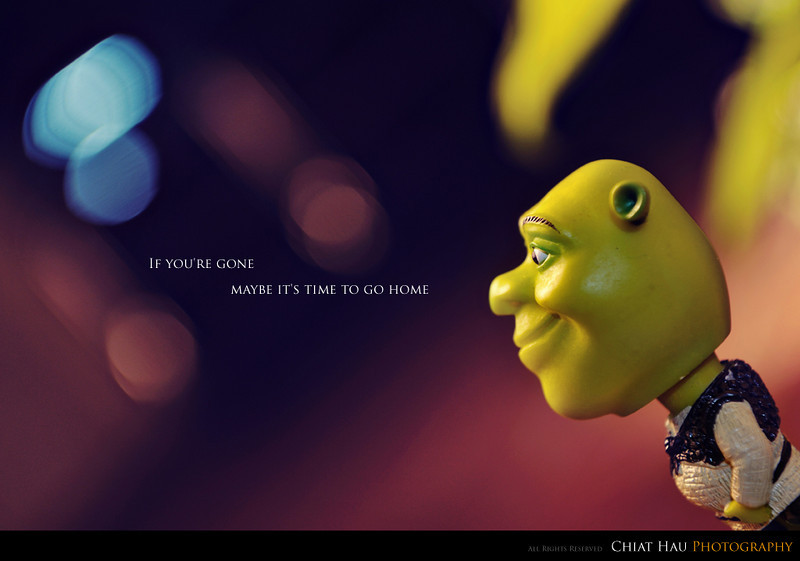 Toys Photography by Chiat Hau Photography (Shrek)