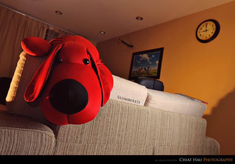 Toys Photography by Chiat Hau Photography (Patrick Red Dog)