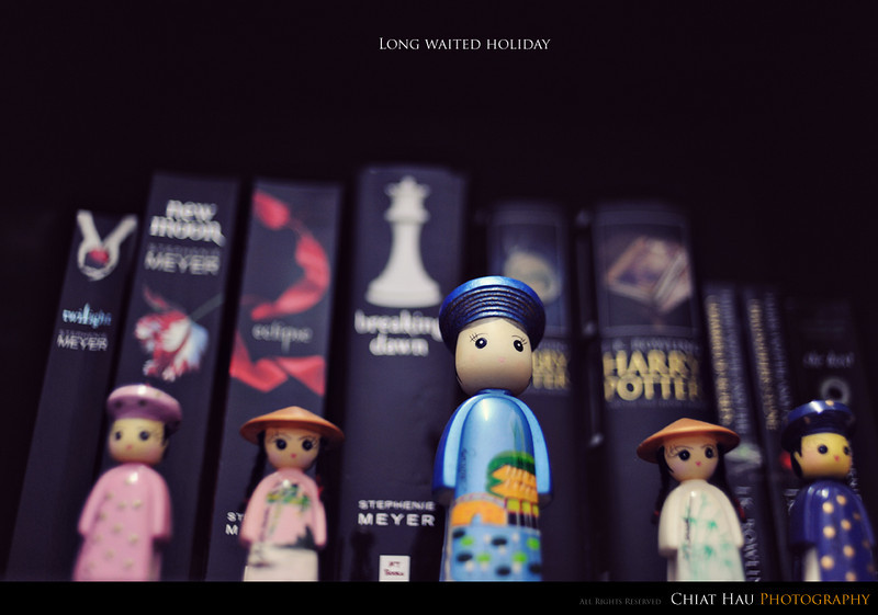 Toys Photography by Chiat Hau Photography (Vietnam Dolls)